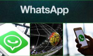 ATC su Whatsapp! Segnalaci aggiornamenti, trasferimenti e notizie gratuitamente