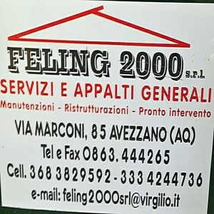 Feling 2000
